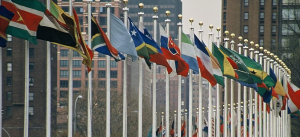UN Members Flags / Aotearoa / CC BY-SA 3.0