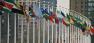 UN Members Flags / Aotearoa / CC BY-SA 3.0