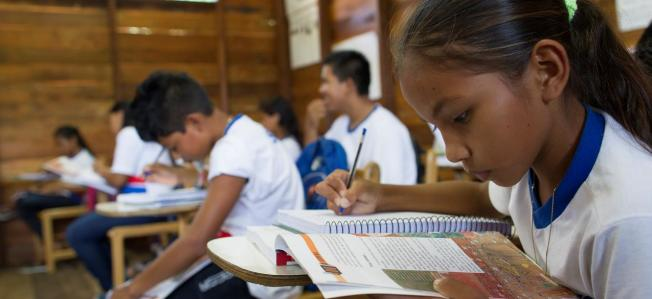 Visita a escuela cerca de Manaos, estado de Amazonas, Brasil / Oficina Regional de Educación / CC BY-NC-SA 2.0